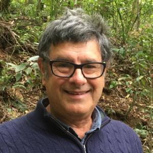 David Bartolo